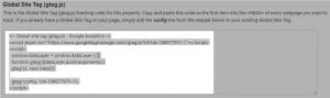 Copy Site Tag